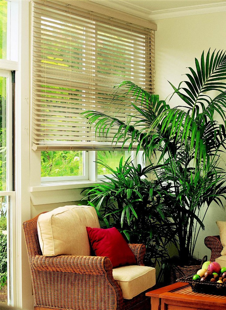 Luxaflex Beyond Woods Blinds